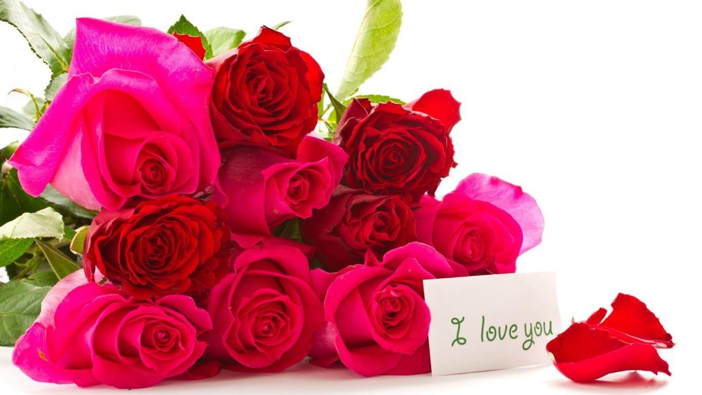 Букет красных роз для любимой на 8 марта - C 8 марта поздравительные картинки
