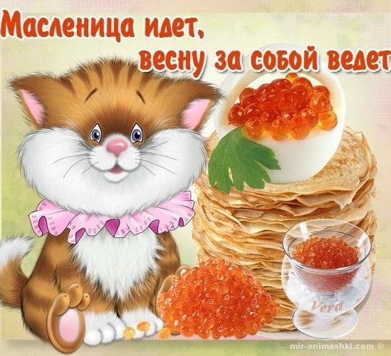 Масленица блинчики - С Масленицей поздравительные картинки