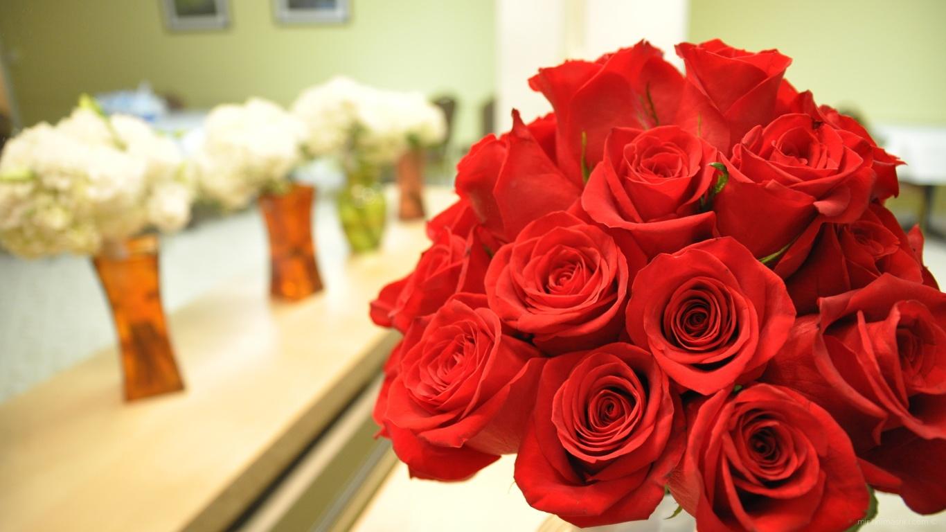 Прекрасные красные розы на 8 марта - C 8 марта поздравительные картинки