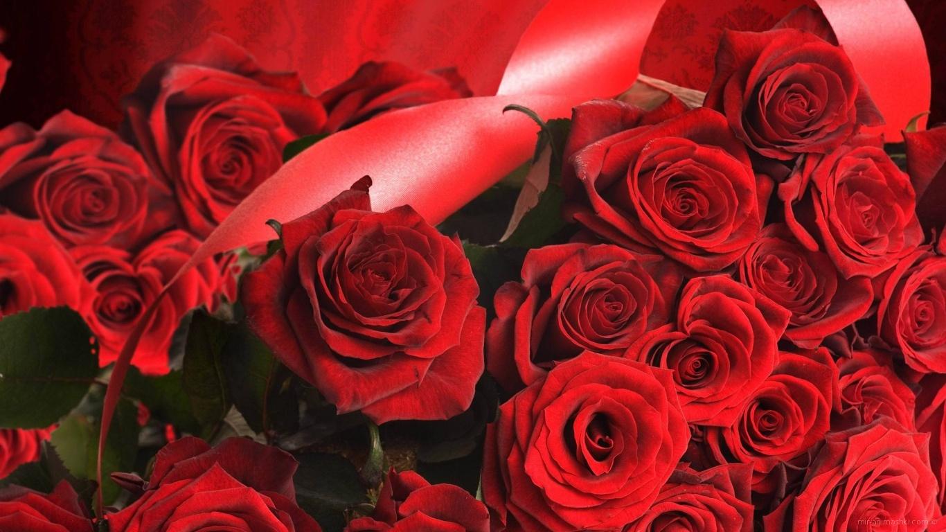 Красные розы на 8 марта с красными лентами - C 8 марта поздравительные картинки