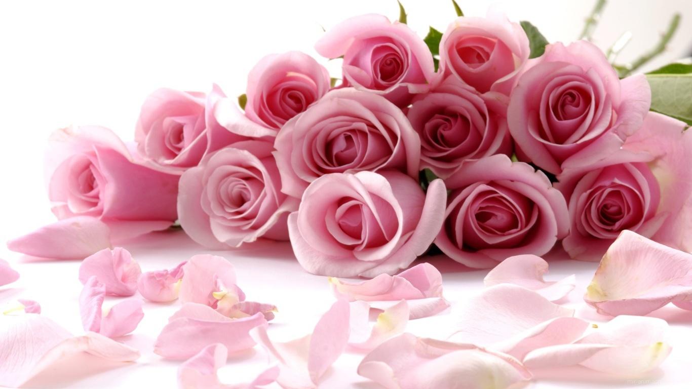Поздравления женщине по имени роза