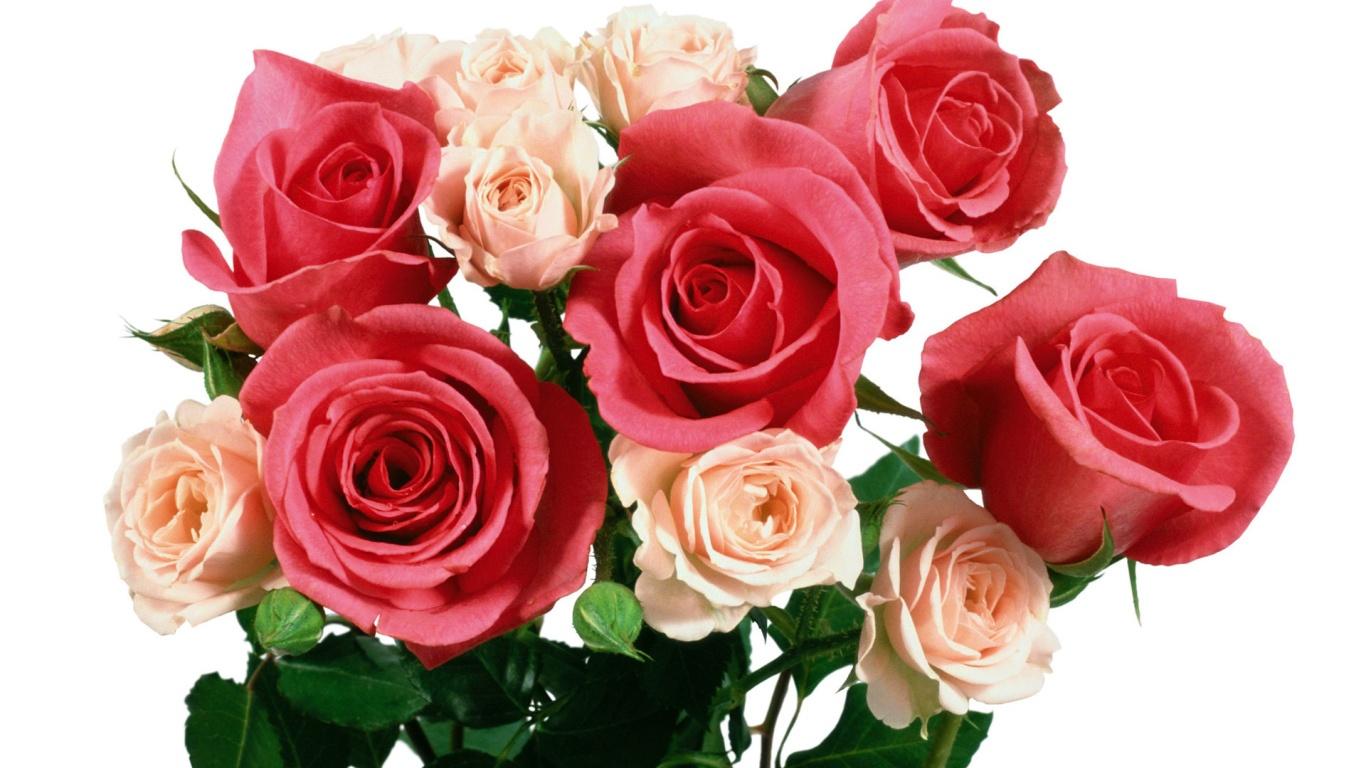Букет из алых и бежевых роз на 8 марта - C 8 марта поздравительные картинки