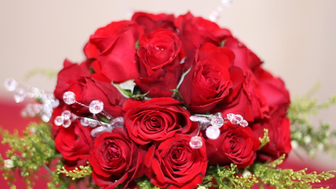 Красные розы на 8 марта с зелеными ветками - C 8 марта поздравительные картинки