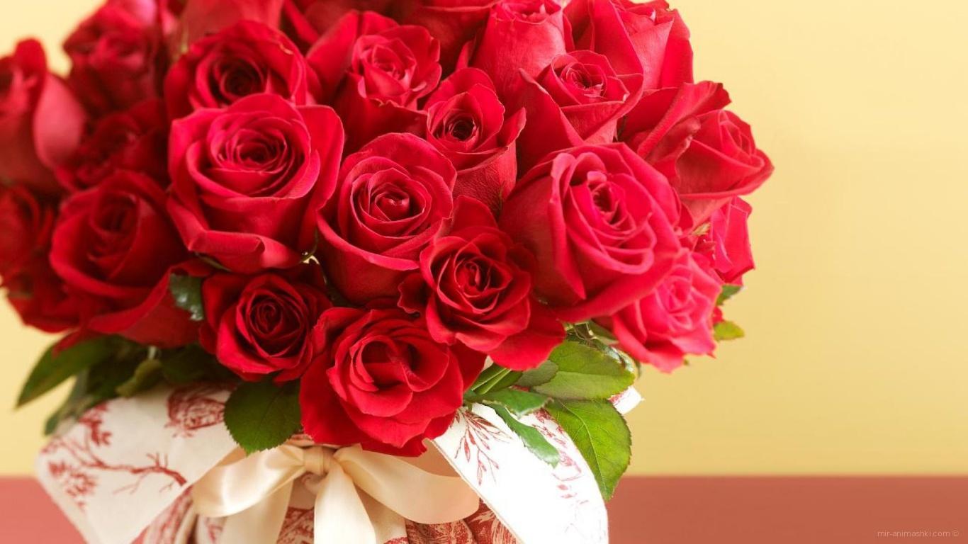 Букет красных роз на 8 марта на пастельном фоне - C 8 марта поздравительные картинки