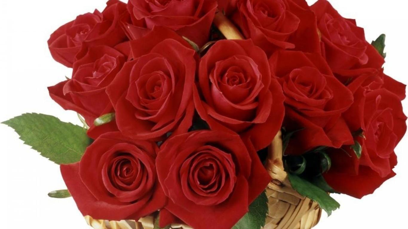 Букет волшебных красных роз на 8 марта - C 8 марта поздравительные картинки