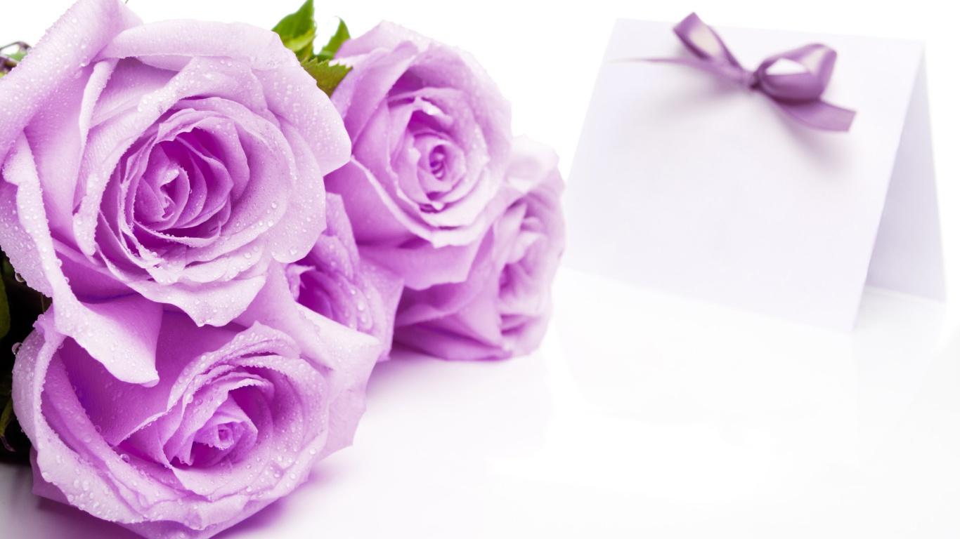 Букет из сиреневых роз на 8 марта для любимой - C 8 марта поздравительные картинки