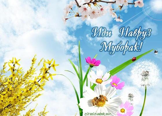 Навруз на таджикском языке - Навруз — Наурыз Мейрамы поздравительные картинки