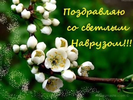 Навруз -время весеннего равноденствия - Навруз — Наурыз Мейрамы поздравительные картинки
