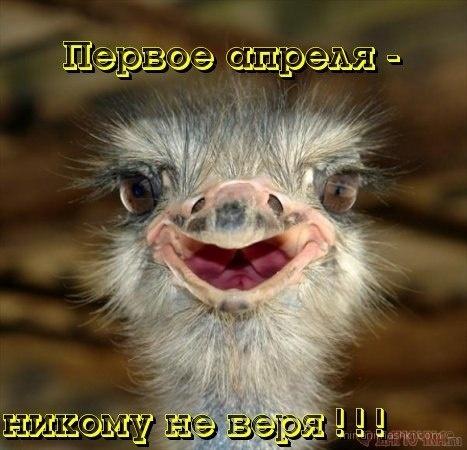 Первое апреля день смеха - 1 апреля день смеха поздравительные картинки