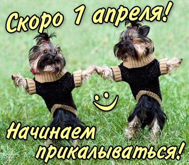 Скора день смеха - 1 апреля день смеха поздравительные картинки