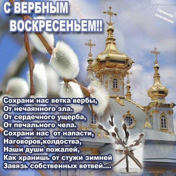 Вербное Воскресенье открытка со стихами - С Вербным Воскресеньем поздравительные картинки