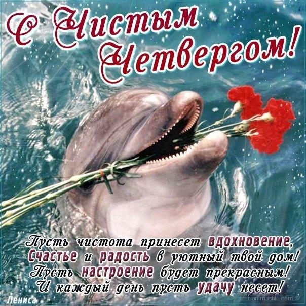 Поздравления чистым четвергом открытки, открытка новый