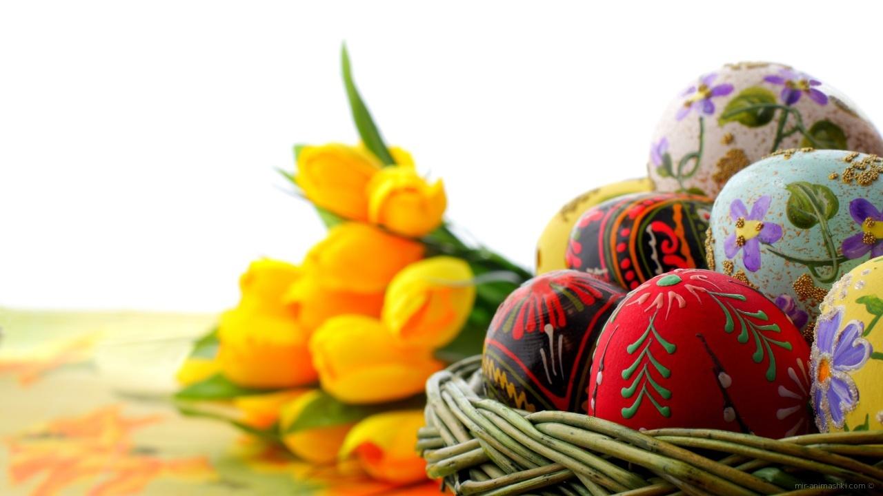 Корзина яиц на фоне тюльпанов на Пасху - C Пасхой 2017 поздравительные картинки