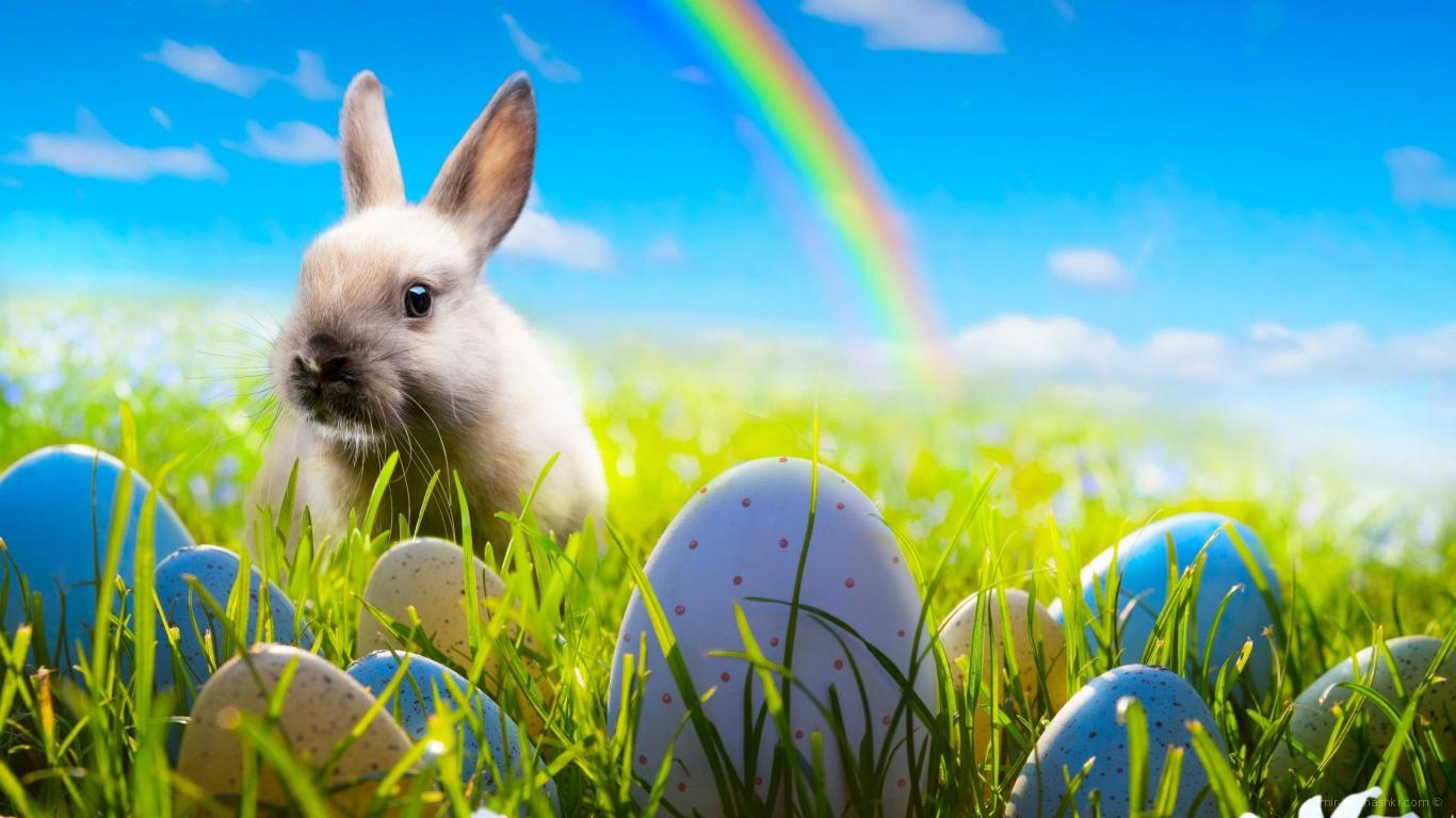 Кролик на фоне радуги на Пасху - C Пасхой поздравительные картинки