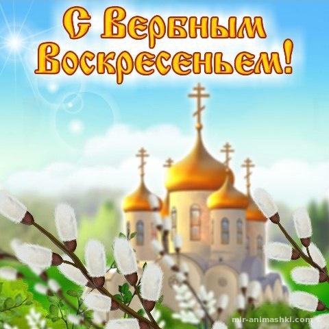 Красивые пожелания посвященные Вербному Воскресенью - С Вербным Воскресеньем поздравительные картинки