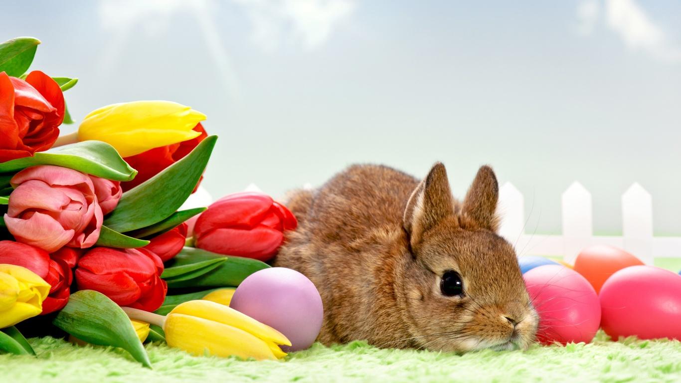 Букет тюльпанов и кролик на Пасху - C Пасхой поздравительные картинки