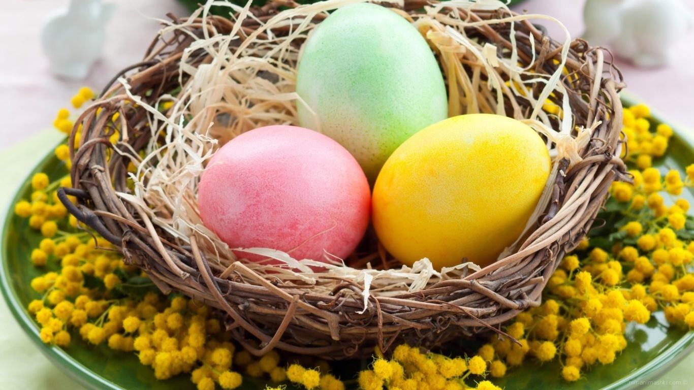 Яйца в плетеной тарелке на Пасху - C Пасхой поздравительные картинки