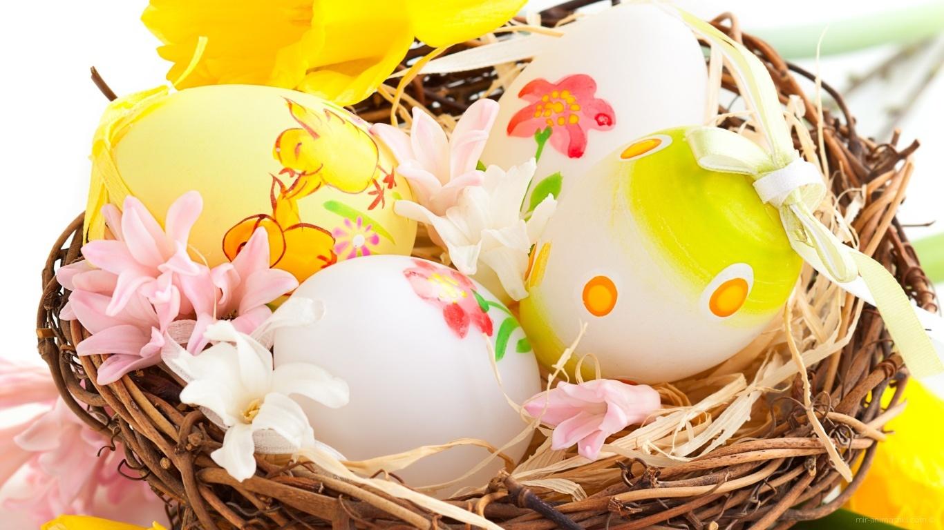 Цветы и яйца в корзине на Пасху - C Пасхой поздравительные картинки