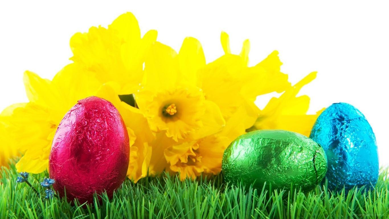 Яйца на фоне желтых цветов на Пасху - C Пасхой поздравительные картинки