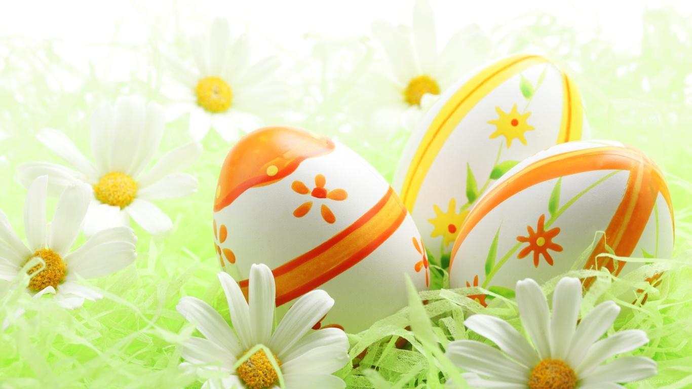 Яйца среди ромашек на Пасху - C Пасхой поздравительные картинки