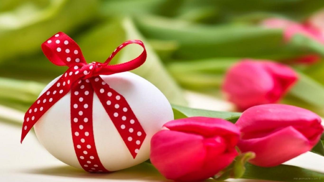 Яйцо с красным бантом на Пасху - C Пасхой поздравительные картинки