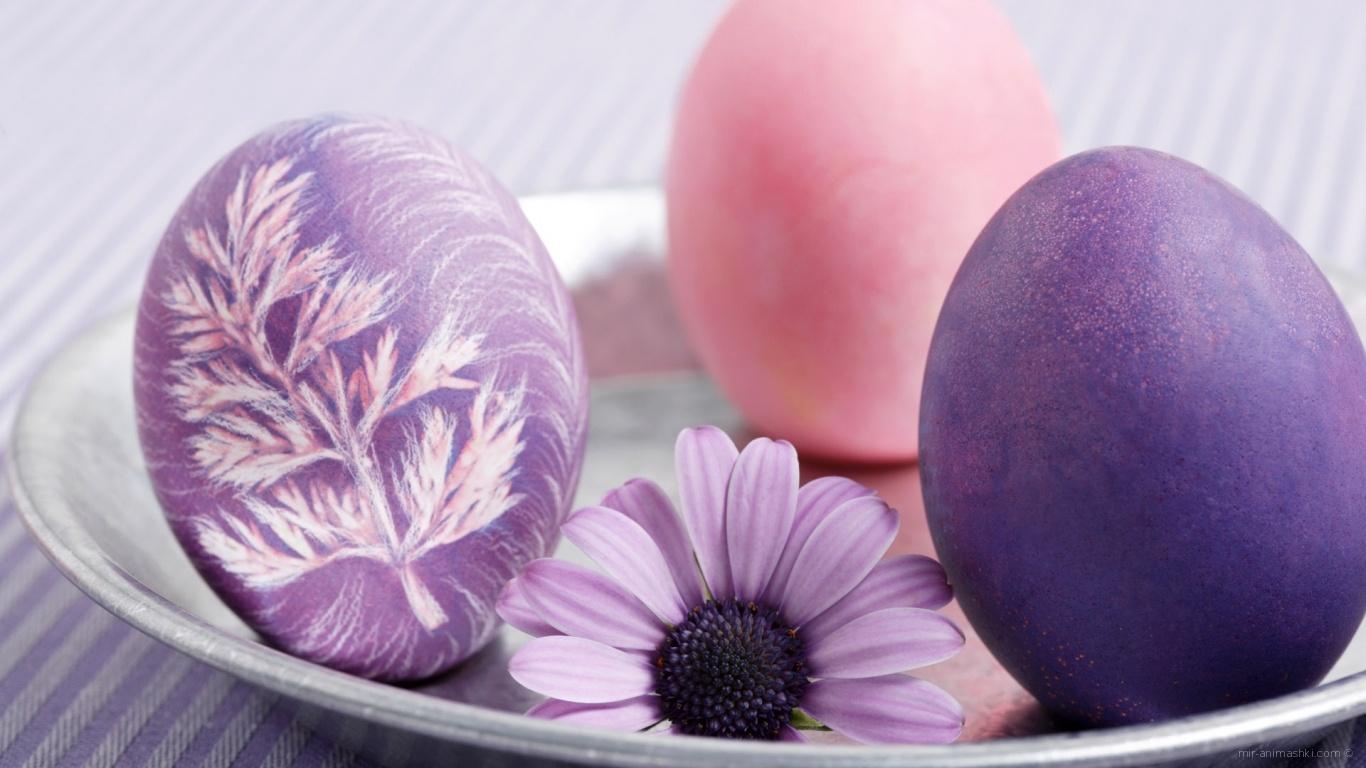 Пасхальные яйца - C Пасхой поздравительные картинки