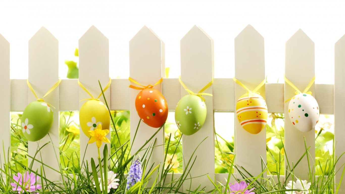 Яйца на заборе на Пасху - C Пасхой поздравительные картинки