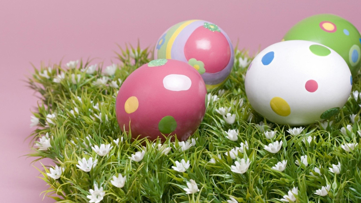 Яйца на траве на Пасху - C Пасхой поздравительные картинки