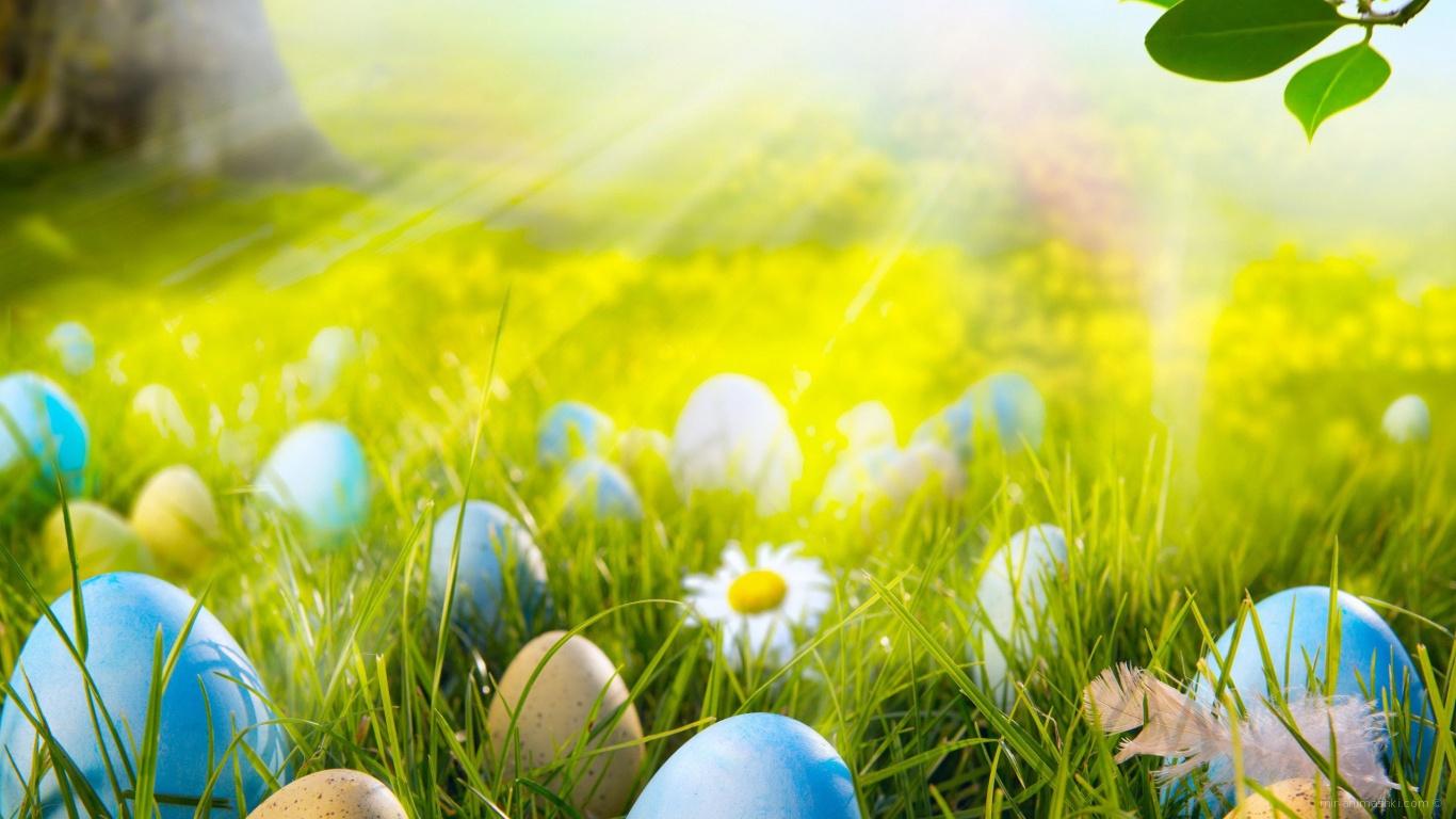 Яйца на лугу на Пасху - C Пасхой поздравительные картинки