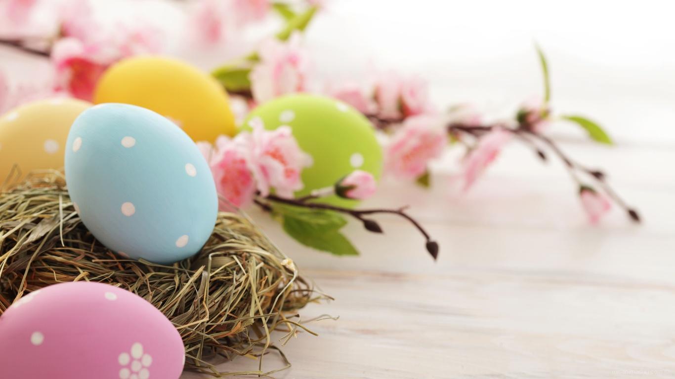 Розовые цветы и яйца на Пасху - C Пасхой поздравительные картинки