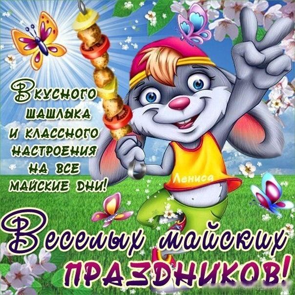 Картинки 1 мая поздравление прикольное, тюльпанов надписями