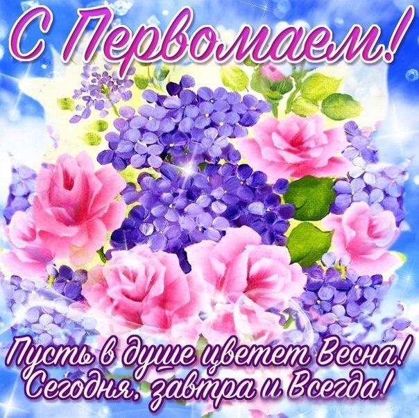 Картинка с цветами на 1 мая - Поздравления с 1 мая поздравительные картинки