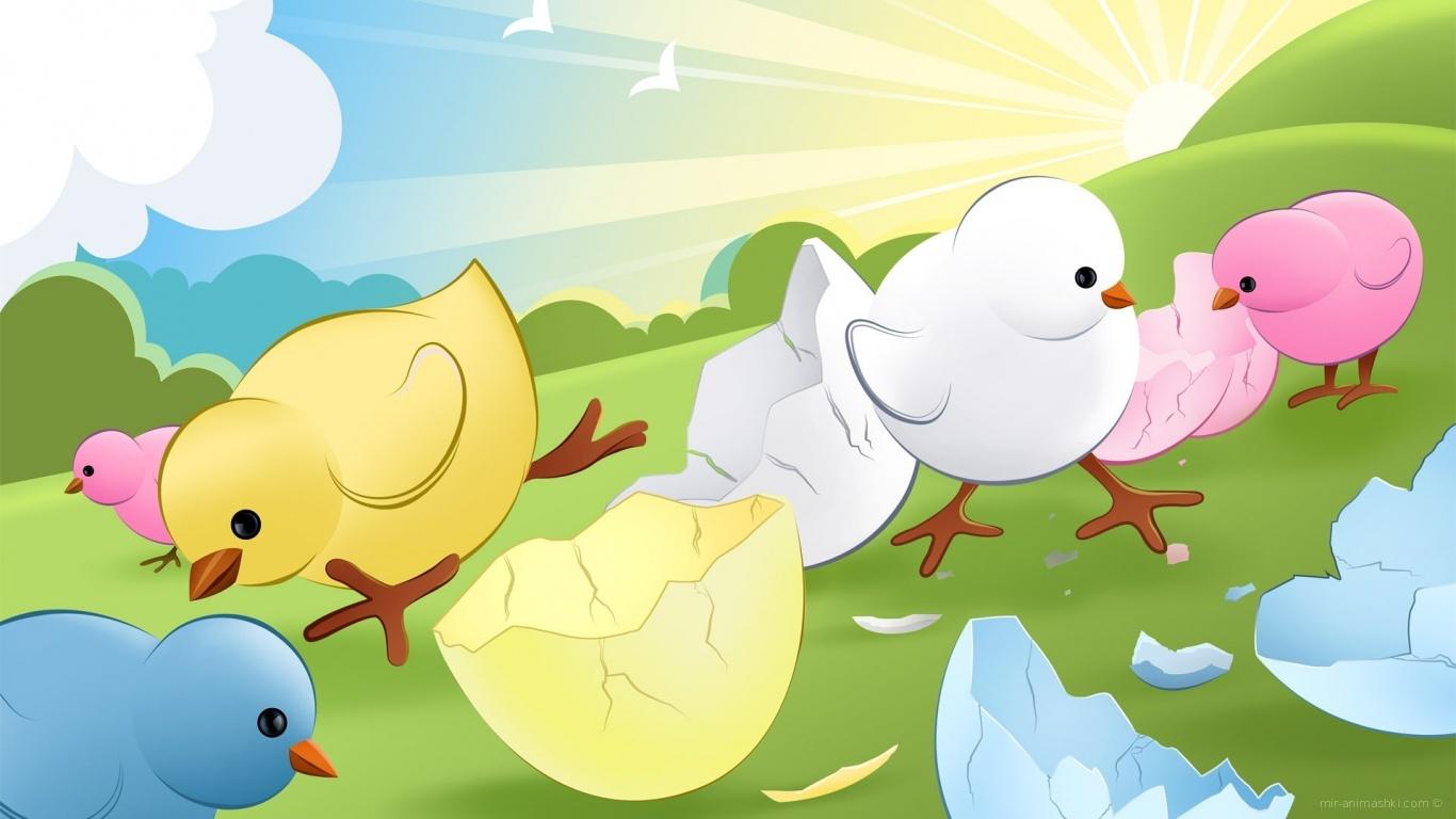Пасхальные цыплята - C Пасхой поздравительные картинки
