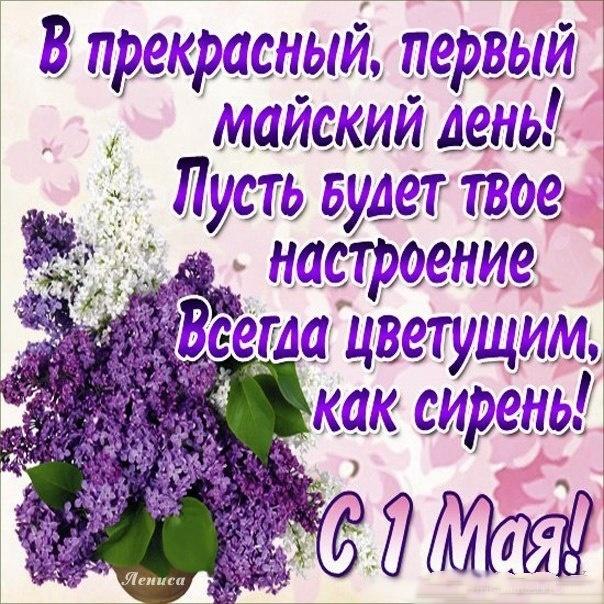 Чудесный праздник первомай - Поздравления с 1 мая поздравительные картинки