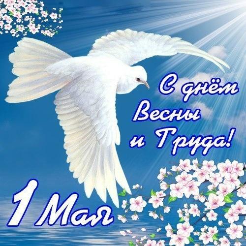 С днём весна и труда - Поздравления с 1 мая поздравительные картинки