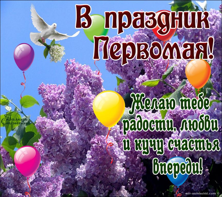 Красочные картинки поздравления с 1 мая