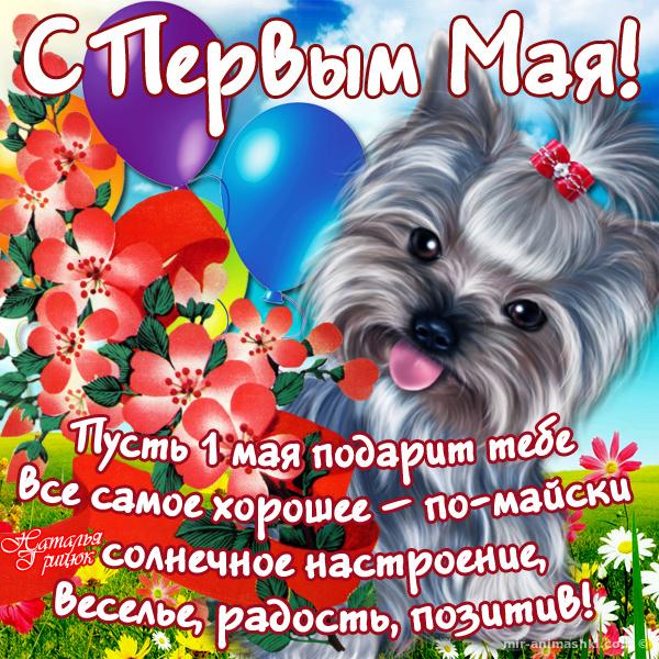 С праздником 1 мая - Поздравления с 1 мая поздравительные картинки