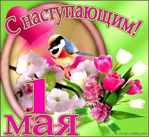 Поздравление с наступающим Первомаем - Поздравления с 1 мая поздравительные картинки