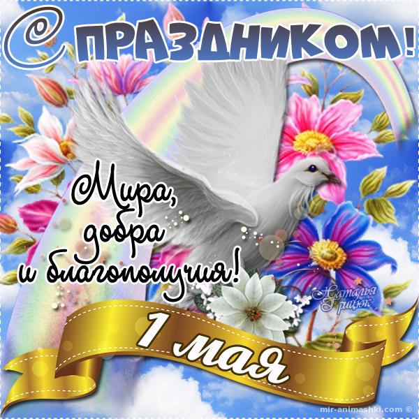 Стильная открытка с 1 мая - Поздравления с 1 мая поздравительные картинки