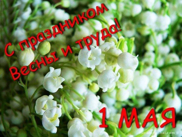 С праздником весна и труда - Поздравления с 1 мая поздравительные картинки