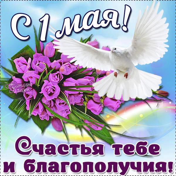 Поздравления на 1 мая - Поздравления с 1 мая поздравительные картинки