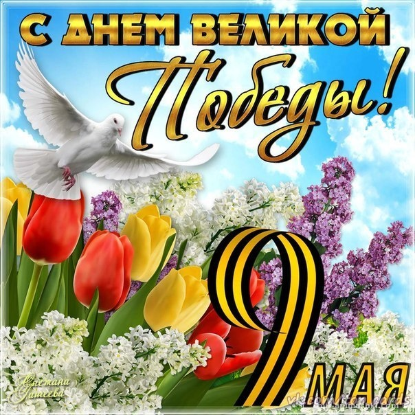 Спасибо за победу - С Днём Победы 9 мая поздравительные картинки