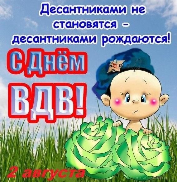 Поздравления  с днем вдв прикольные - С днём ВДВ (Воздушно-десантных войск) поздравительные картинки
