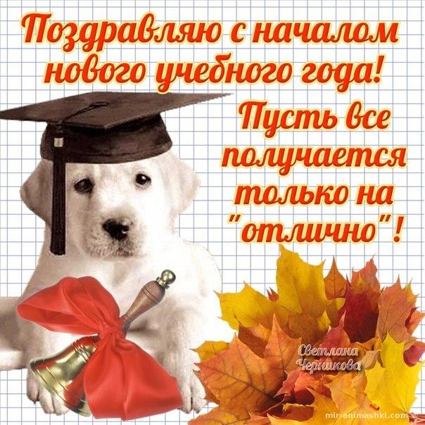 Красивая картинка с 1 сентября первокласснику - 1 сентября - День знаний поздравительные картинки