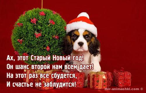Поздравляю с Новым годом! Годом Собака - C Новым годом  2018 поздравительные картинки