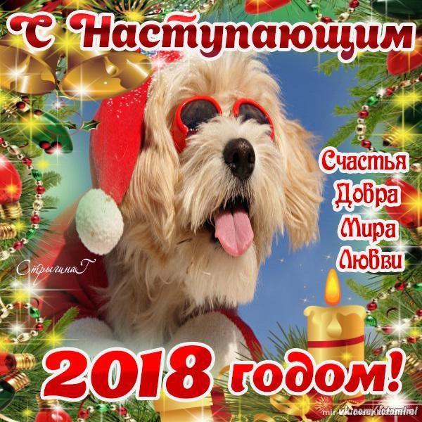 Открытки с наступающим Новым Годом Собака - C наступающим новым годом 2018 поздравительные картинки