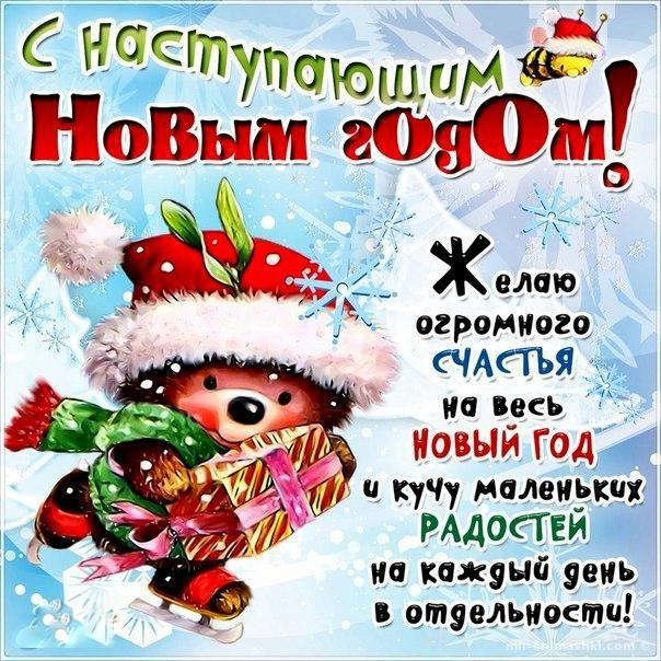 http://mir-animashki.com/_bd/47/79806308.jpg