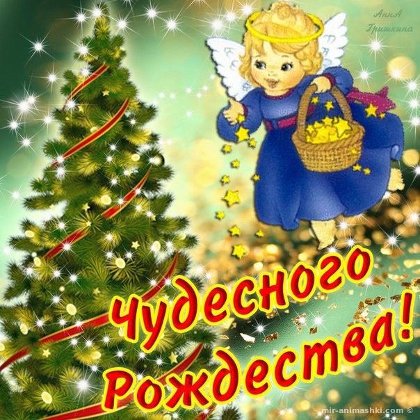 Чудесного Рождества - C Рождеством Христовым поздравительные картинки