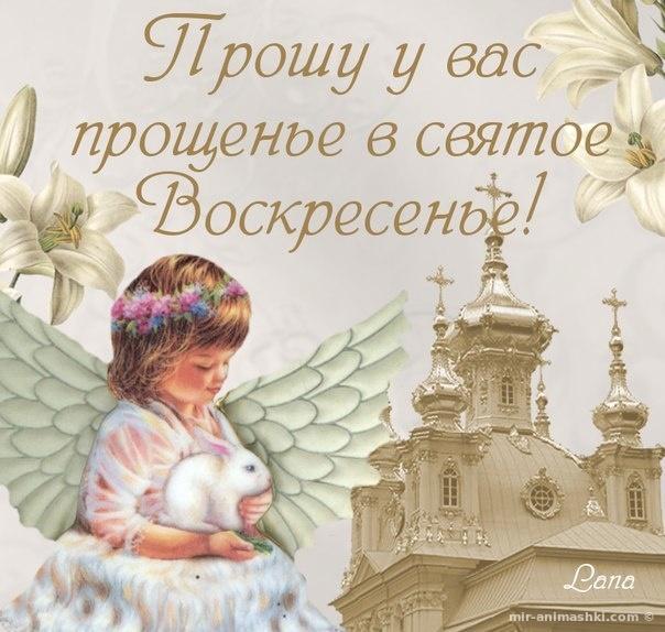 Добрые хорошие открытки на Прощеное Воскресенье - Прощенное воскресенье поздравительные картинки