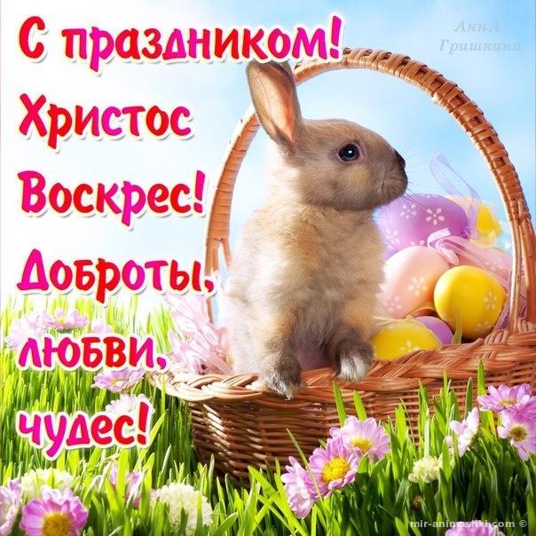 Поздравительные открытки с Пасхой - C Пасхой поздравительные картинки